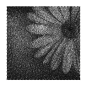 string-art flower