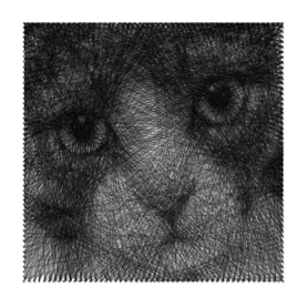 string-art chat cat