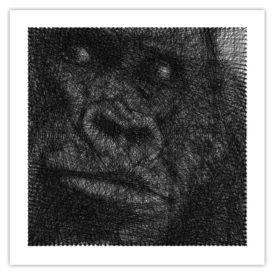 Tableau needle Gorille