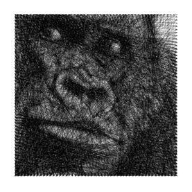 Tableau-Gorille